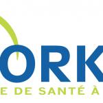 logo Orkyn