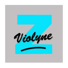 logo_ZT CONCEPT